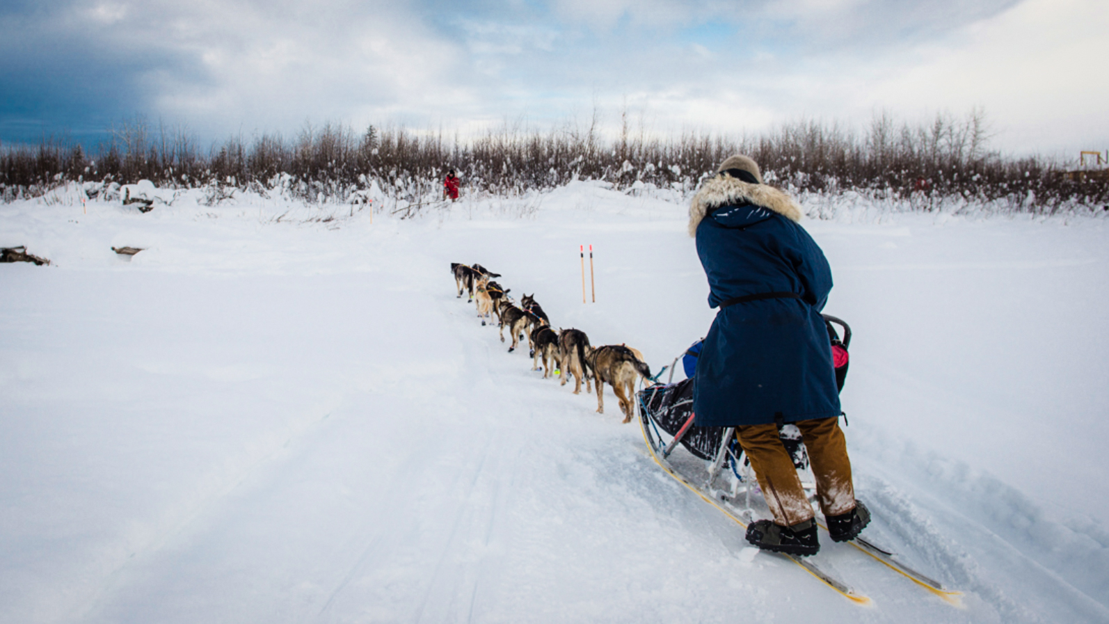 Following behind a dog musher and their team in Central, Alaska - Pat Kane