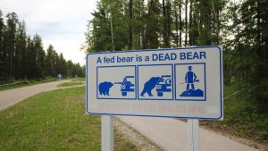 A sign warning people not to feed bears in Fort Smith. Sarah Pruys/Cabin Radio