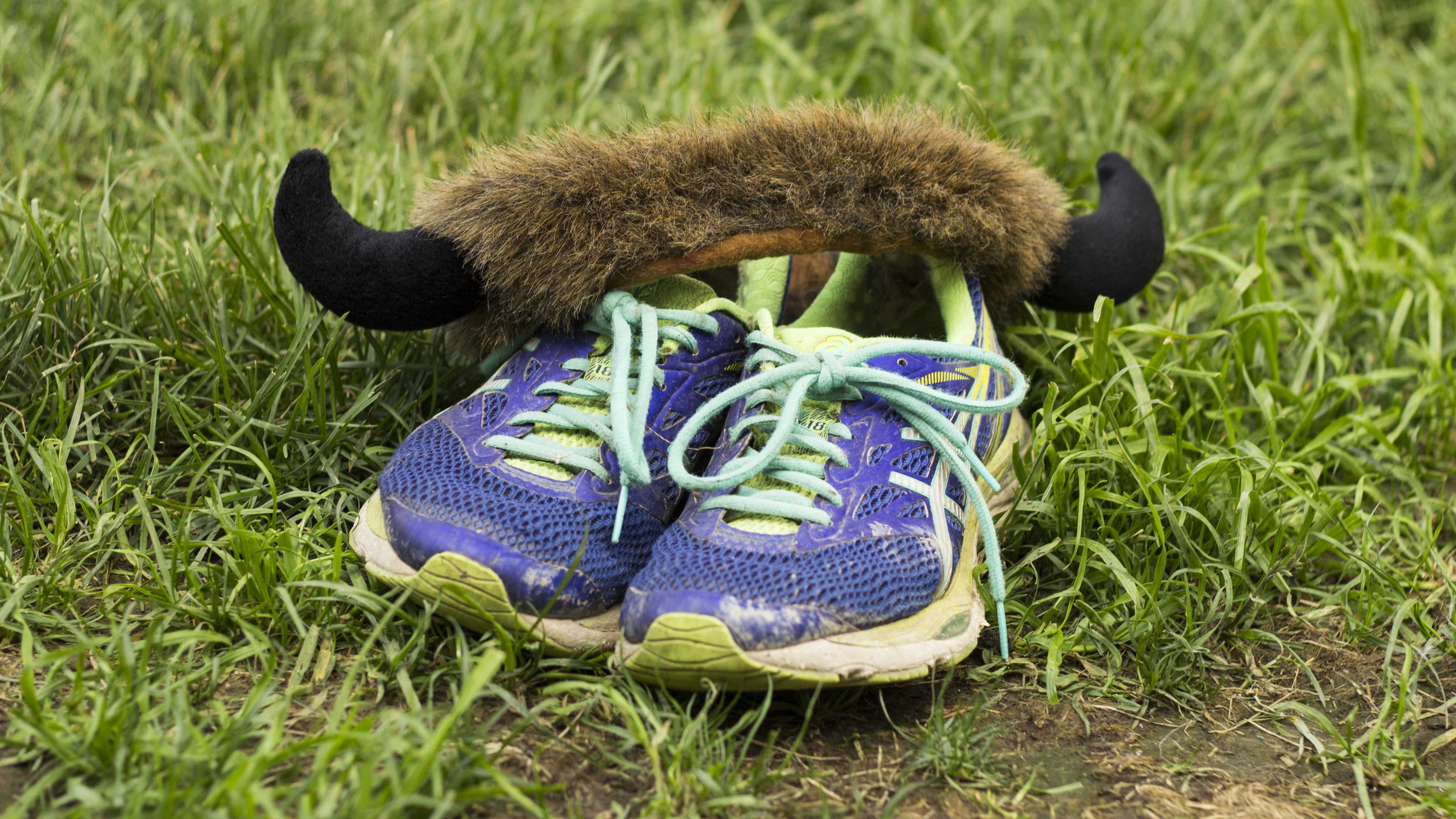 Suggested headband for the Mad Bison Mud Run. Sarah Pruys/Cabin Radio