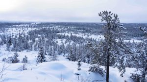 Yellowknife's Ranney Hill lies blanketed in snow