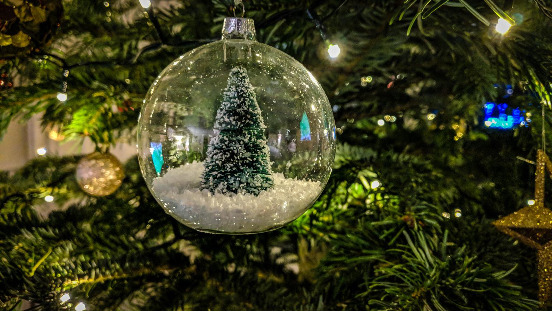 A file photo of a Christmas tree