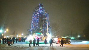 A file photo of the Fort Smith's former Christmas tree in December 2016, the year before it was cut down