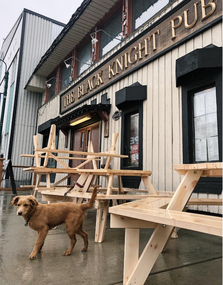 Penny, the Cabin Radio puppy, inspects the Black Knight's patio area. Sara Wicks/Cabin Radio