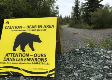 A sign warns of a bear in the Tin Can Hill area