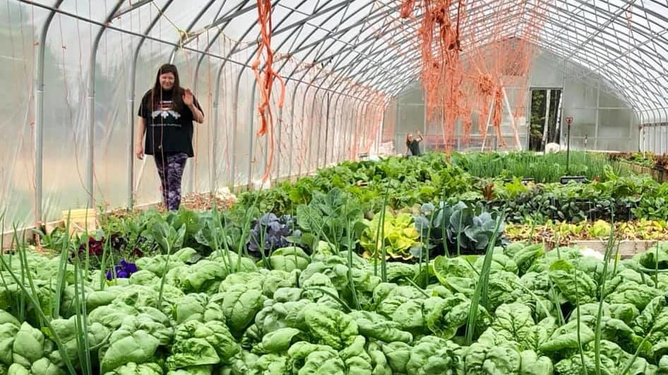 Volunteers Brooklyn and Mindy at the Northern Farm Training Institute's greenhouse in Hay River in June