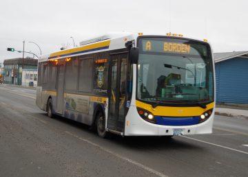 A Yellowknife transit bus along Franklin Avenue