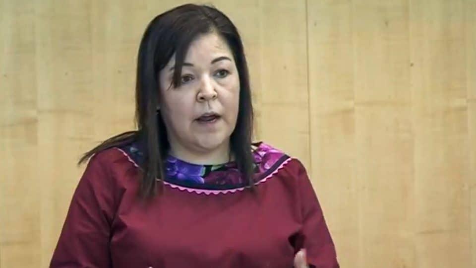 Diane Thom speaks in the legislature in October 2019
