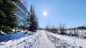 Yellowknife's deserted Frame Lake Trail in April 2020