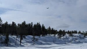 A Globemaster aircraft seen from Yellowknife's Grace Lake in April 2020