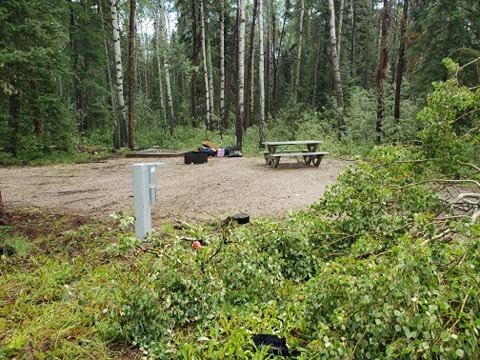 Ingrid St-Cyr submitted these photos, above and below, showing trees down at the Louise Falls territorial campground