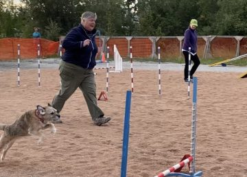 Handler Gay Kennedy runs the course with her dog, Jordie
