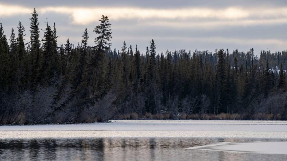 Madeline Lake begins to freeze over in October 2020