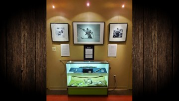 A submitted photo of The Land Provides exhibit at the Northern Life Museum and Cultural Centre. Rohma Nawaz/NLMCC