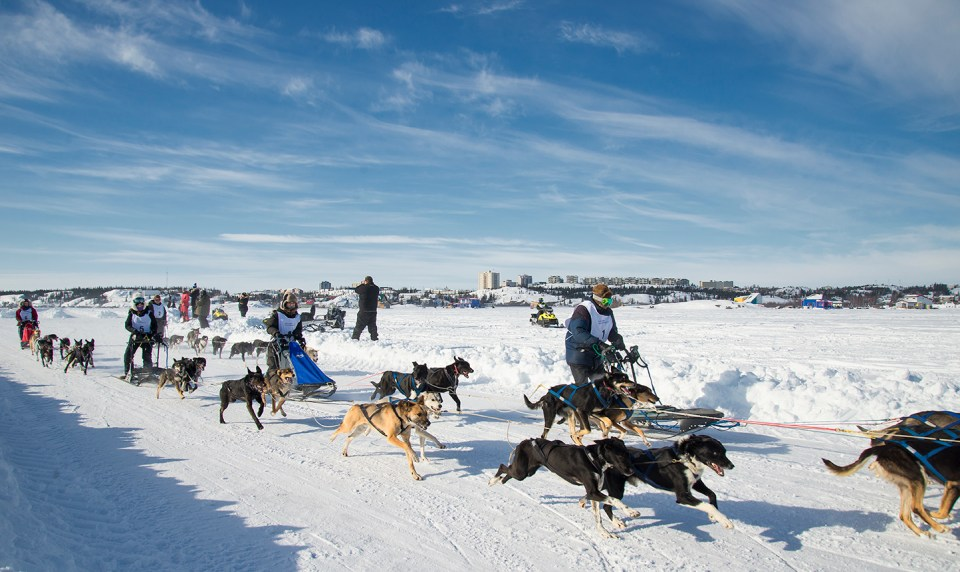 A file photo of the 67th Canadian Championship Dog Derby 10-Dog Race..