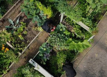 An aerial shot of the Inuvik community greenhouse, included in the press kit for the documentary Food for the Rest of Us