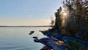 An island on Jennejohn Lake in August 2021