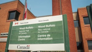 The Wood Buffalo National Park information centre in Fort Smith in August 2021. Sarah Pruys/Cabin Radio