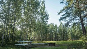 A campsite at Little Buffalo River Falls Territorial Park in August 2021. Sarah Pruys/Cabin Radio
